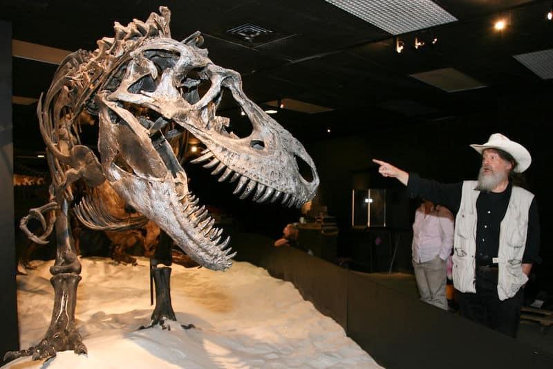 dinosaurio y paleontologo