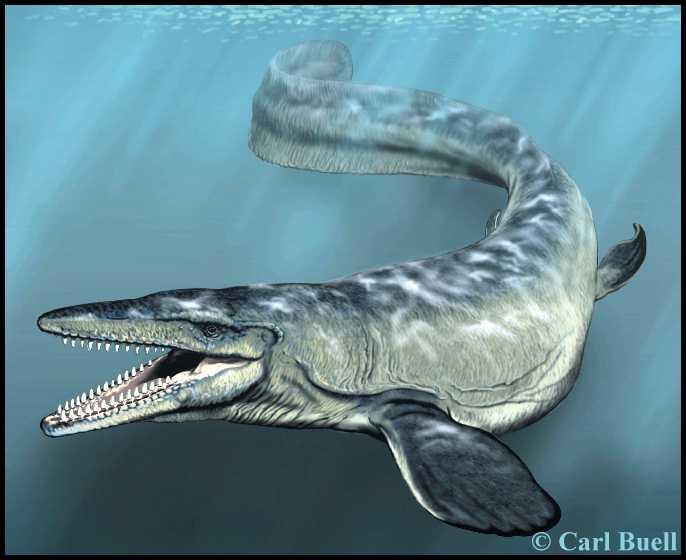 Dinosaurios de agua