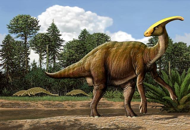 Parasaurolophus2