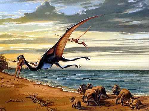 Quetzalcoatlus3