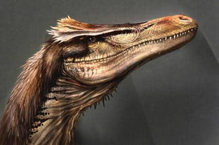 astroraptor