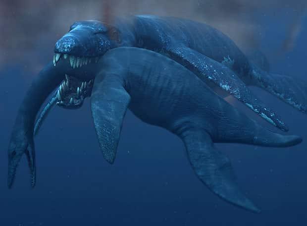 dinosaurio raro marino