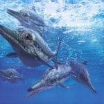 dinosaurio marino raro