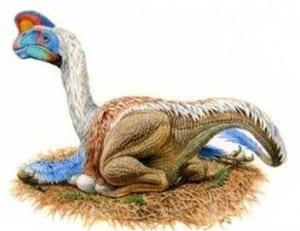 DinovsRept2