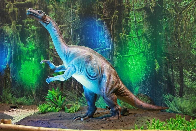 plateosaurus el tiro murcia