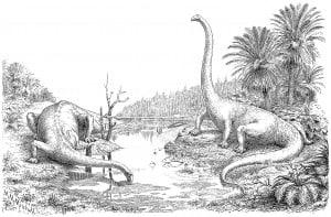 hay1910-plate1-sprawling-diplodocus