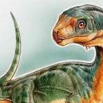 Chilesaurus-diegosuarezi-1-e1430322140366