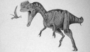 Monolophosaurus
