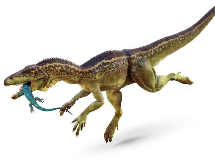 Alimentación del Eoraptor