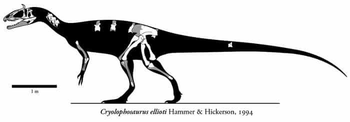 Descripción sobre el Ornitholestes