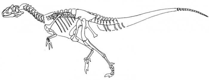 Características de Abrictosaurus