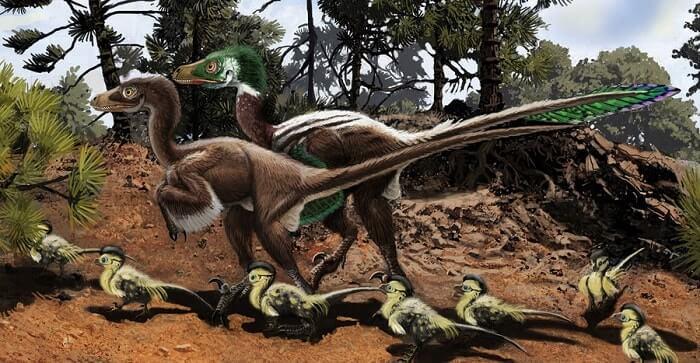 Dibujo de un Dromaeosaurus