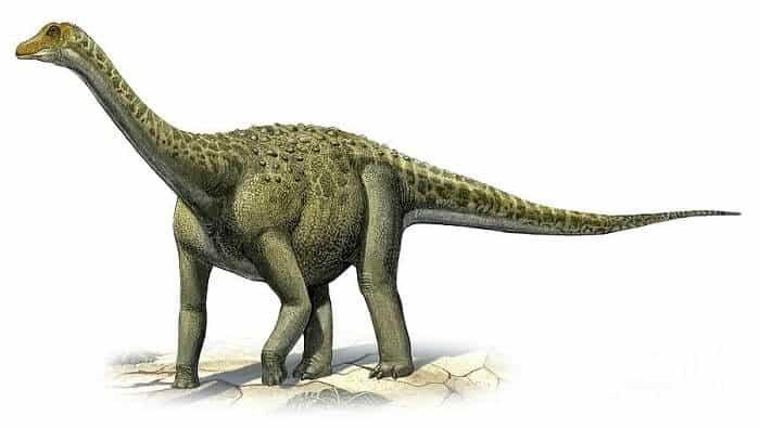 Dibujo de un Titanosaurus