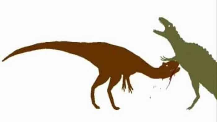 Diferencias entre Giganotosaurus y Acrocanthosaurus