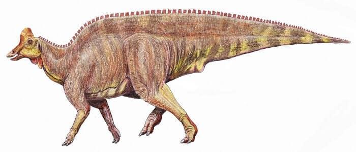 Historia del Lambeosaurus