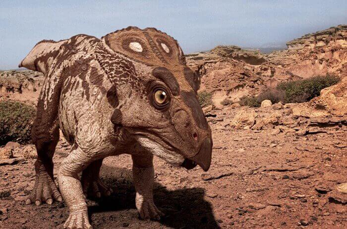 Dibujo de un Protoceratops