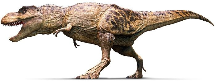 Dibujo de un Tyrannosaurus Rex