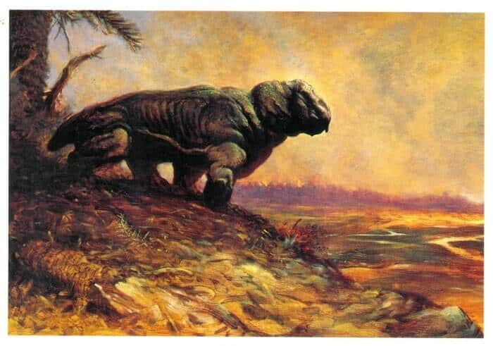 habitat-lystrosaurus