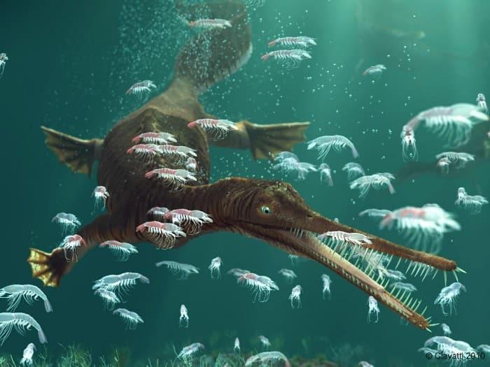 Hábitat natural de los Mesosaurus