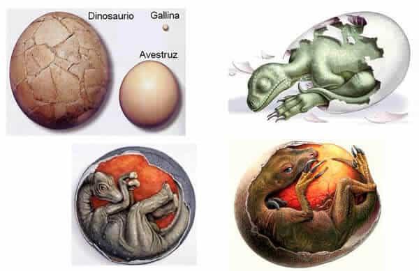 producción de los dinosaurios terrestres