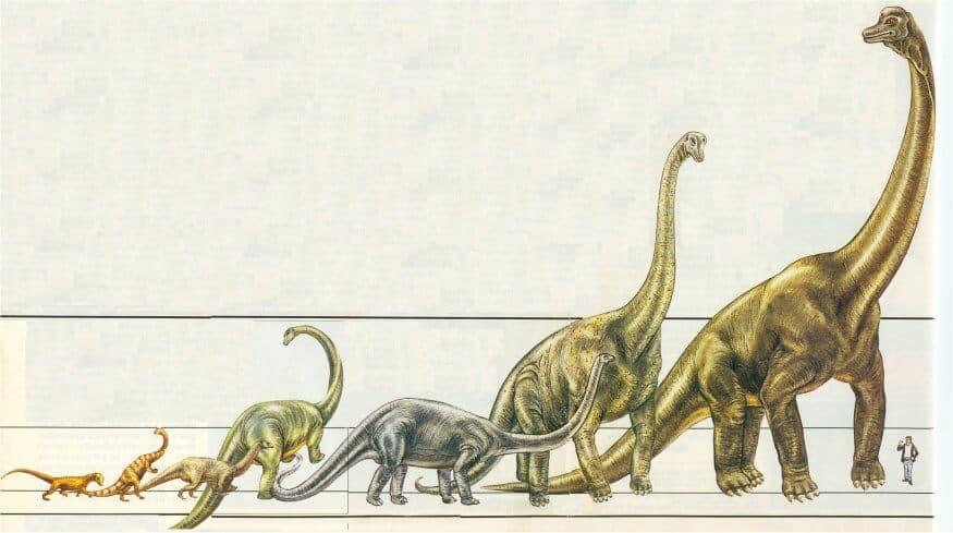 origen de los dinosaurios