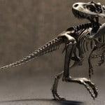 esqueleto y reproducción de un tyrannosaurus rex