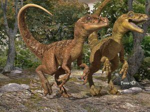 Velociraptor rapido feroz famoso desgarrador letal