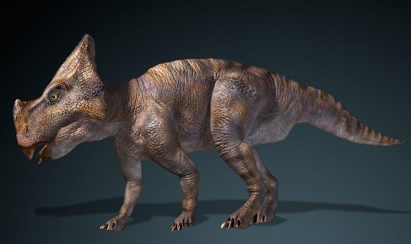 recreacion de montanoceratops