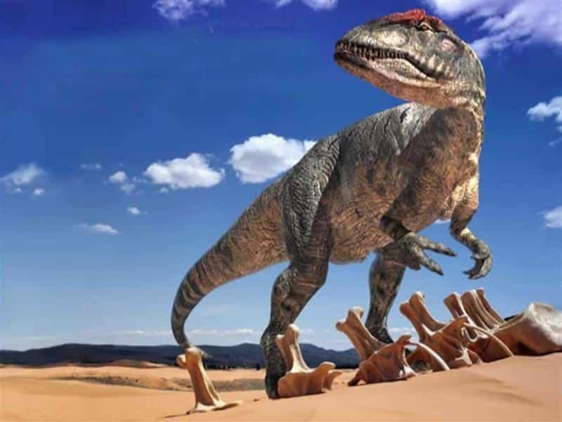 Tiranosaurio-Rex