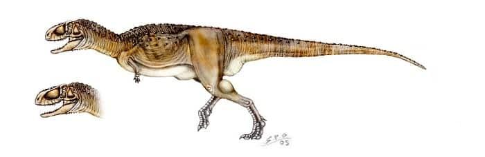 Características del Abelisaurus