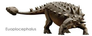 Descripción del Euplocephalus