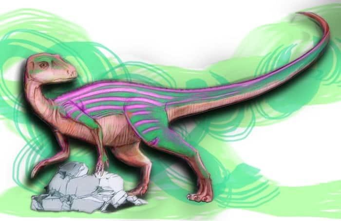 El comportamiento del Abrictosaurus