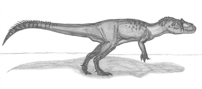 Descripción del Saurophaganax