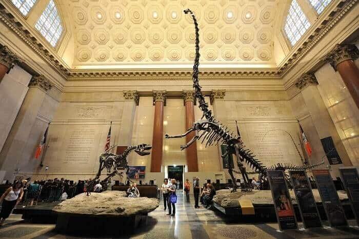 Reeconstrucción del Barosaurus