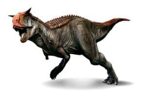 Carnotaurus - un dinosaurio carnívoro con cuernos