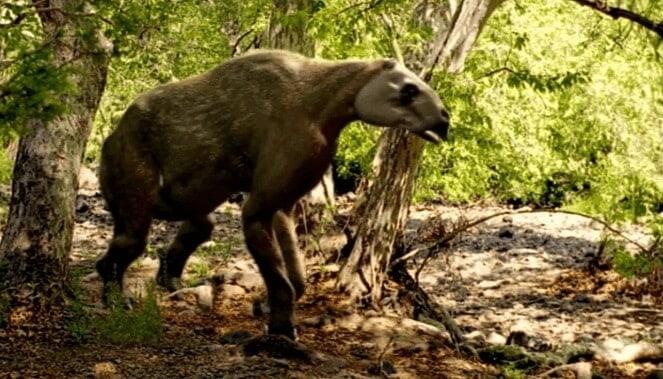 Comportamiento del Chalicotherium