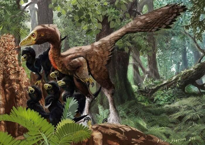 Hábitat natural del Troodon