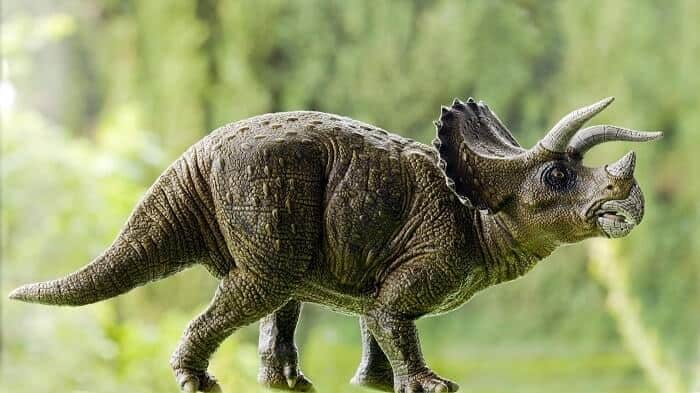 ¿Qué comía el Triceratops?