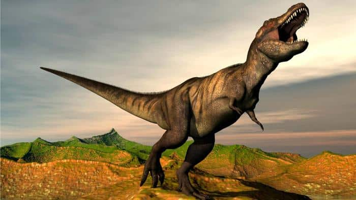 Comportamiento del Tyrannosaurus Rex