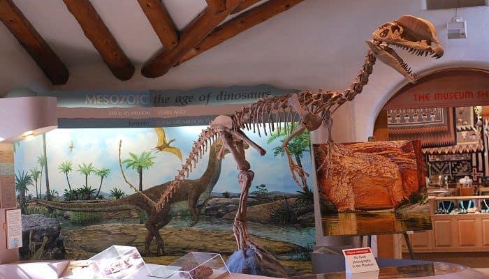 Reconstrucción del Dilophosaurus en el Museo del Norte de Arizona