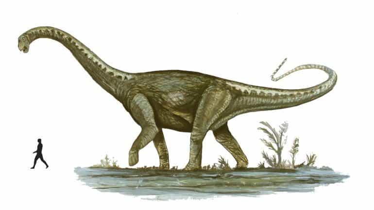 dinosaurio mas grande del mundo