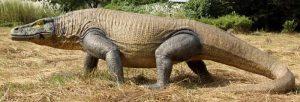 habitat del dinosaurio megalania