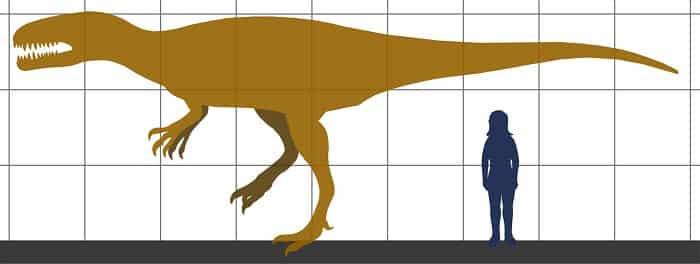 Descripción del Megalosaurus