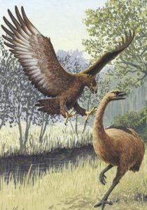 águila de Haast