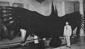 argentavis, ave prehistorica gigante