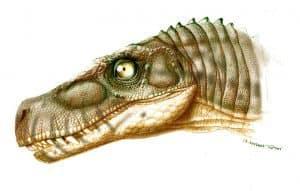Herrerasaurus_cabeza