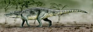 herrerasaurus - depredador saurosuchus