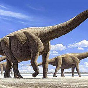 Argentinosaurus – dinosaurio gigante