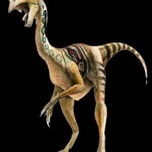 Chirostenotes – dinosaurio carnívoro
