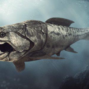 Dunkleosteus – dinosaurio marino